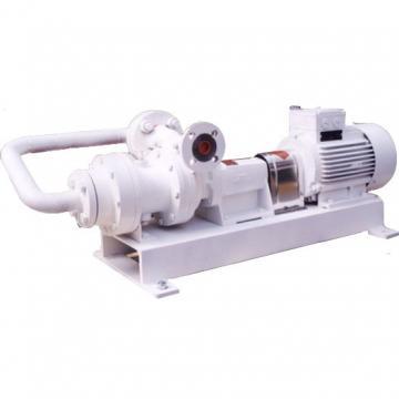 TOKYO KEIKI SQP21-14-7-1DC-18 Double Vane Pump