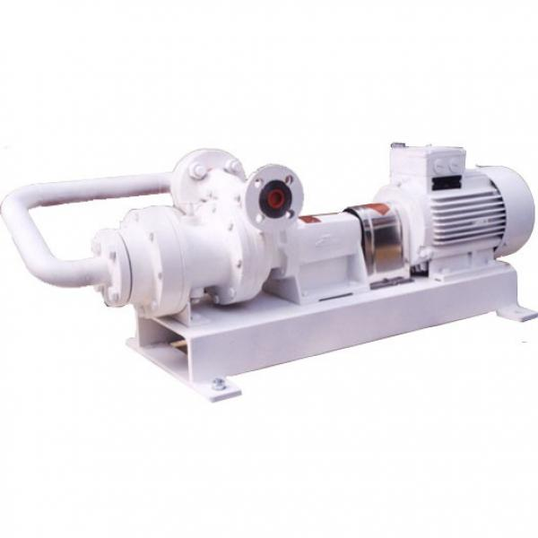 DAIKIN VZ63C12RHX-10 VZ63 Series Piston Pump #2 image